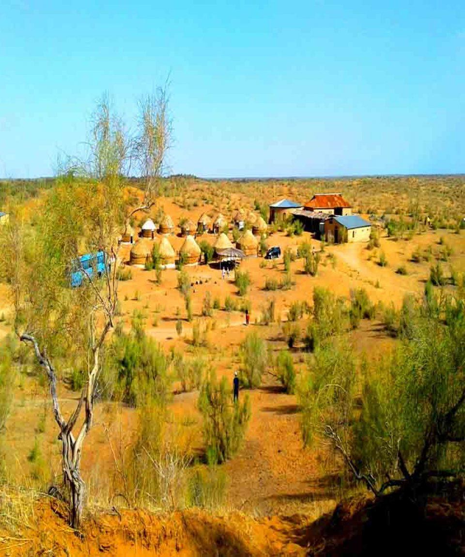 Yurt Camp902x950